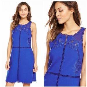 NWT Ted Baker embroidered scalloped hem dress
